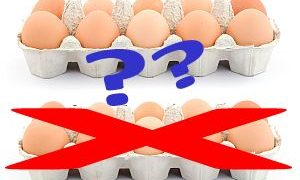 Back Pain Wilmington NC: How Much Protein Should You Have in Your Diet?